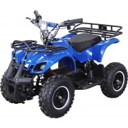 Elektro Kinder ATV Worker 800 Watt Blau